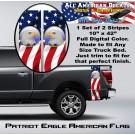 Patriot Eagle American Flag Bed Band Set