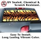Tiger Stripe Back Window Graphic